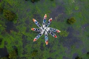 Tour rừng tràm Trà Sư 1 ngày từ Cần Thơ - Giúp bạn khám phá vẻ đẹp rừng ngập mặn