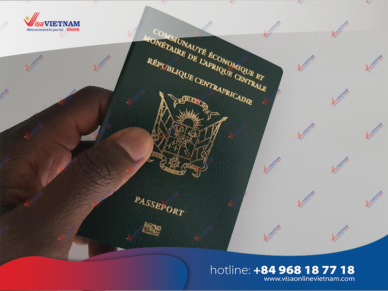 How to apply for Vietnam visa on arrival in Cameroon?